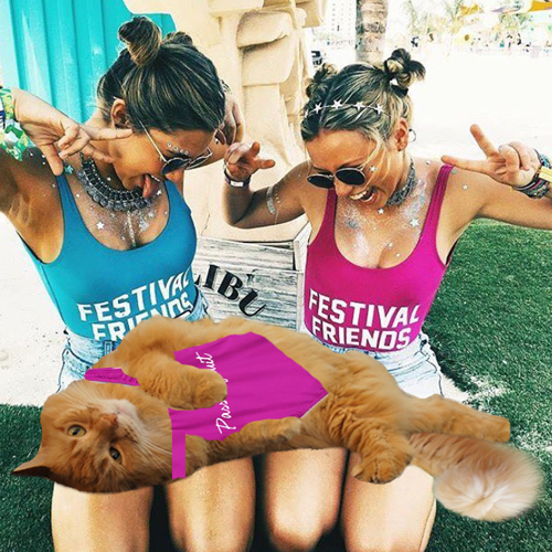 festival-friends
