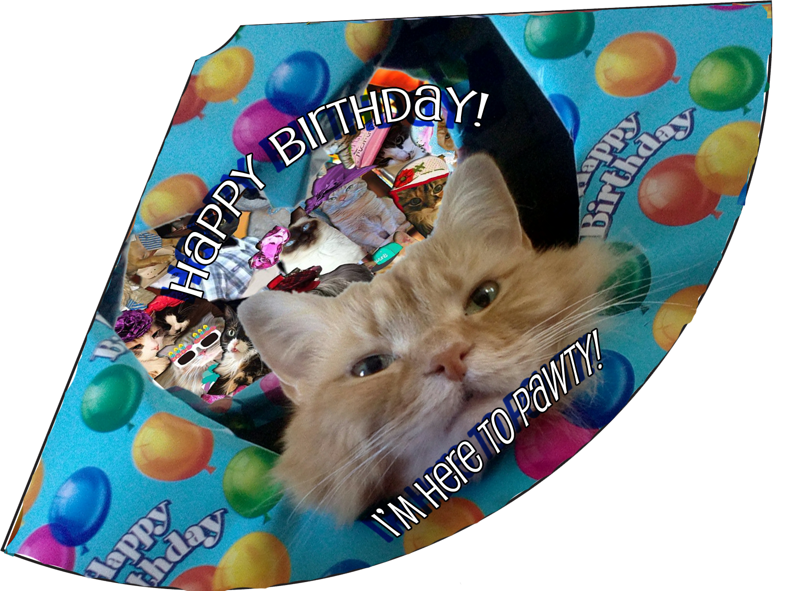 here-to-pawty-birthday-hat