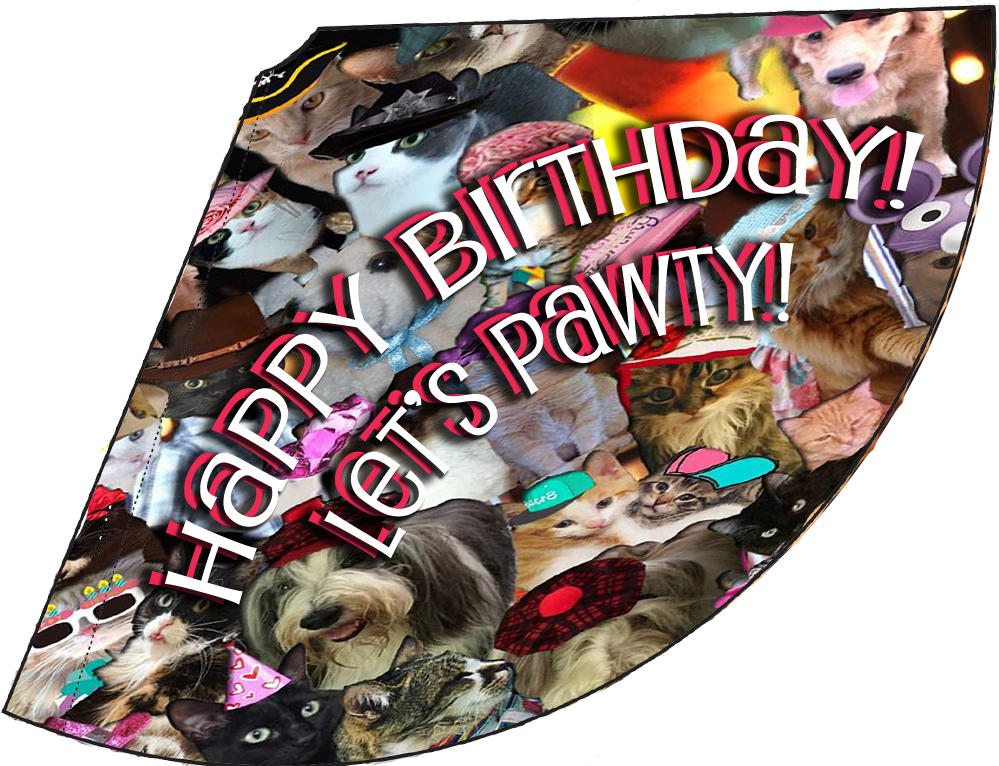 lets-pawty-birthday-hat