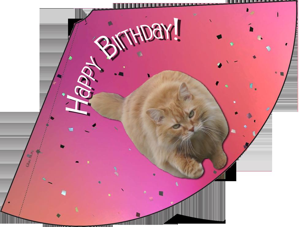 luna-pink-confetti-birthday-hat