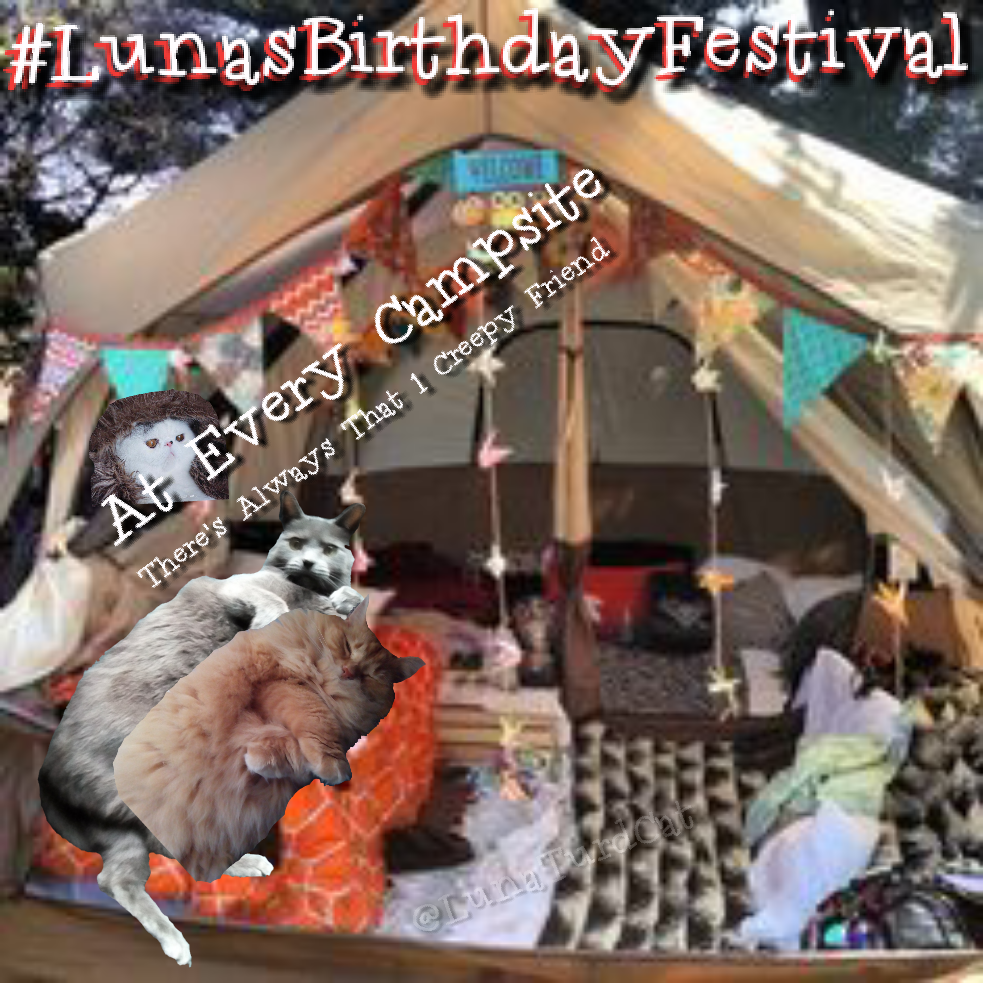 lunasbirthdayfestival-campground